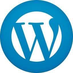编辑WordPress主题functions.php 文件时需要注意哪些?