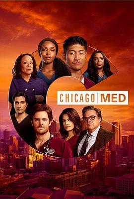 芝加哥急救 第六季海报
