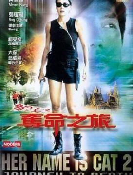 豹女之夺命之旅海报