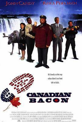 反转加拿大 电影海报