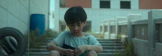河豚百度云资源完整版【免费分享】-树荣社区