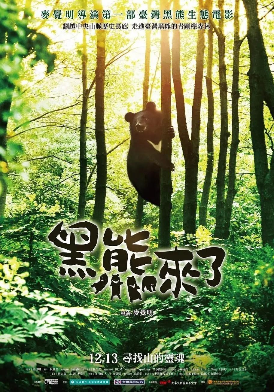 黑熊来了海报