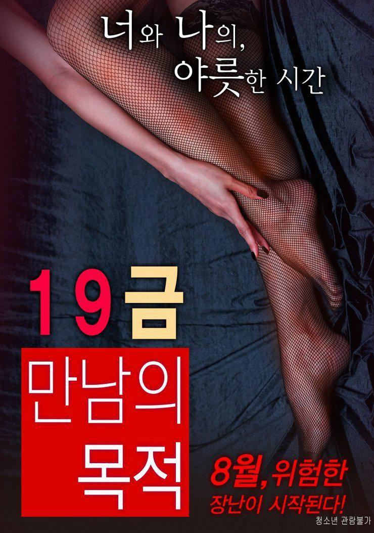 19禁:别人的目的海报