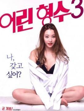 年轻的嫂子3 电影海报