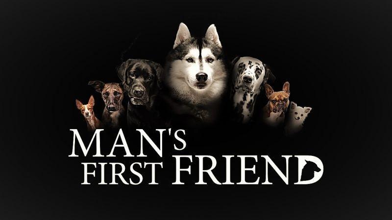 人类的第一个朋友海报