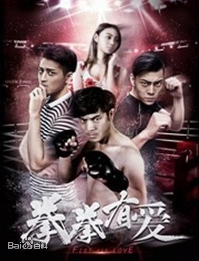 拳拳有爱海报