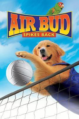 飞狗巴迪5:排球健将海报