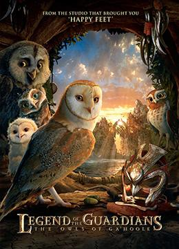 猫头鹰王国:守卫者传奇国语版