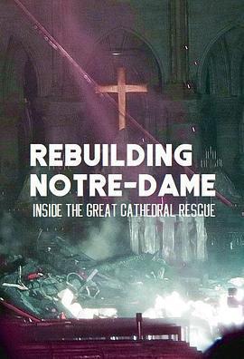 古教堂大救援:争分夺秒拯救巴黎圣母院海报