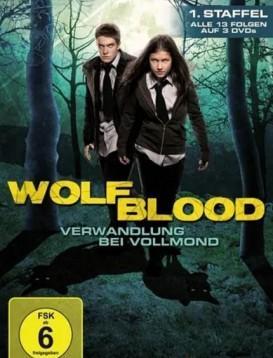 狼血少年 第一季海报