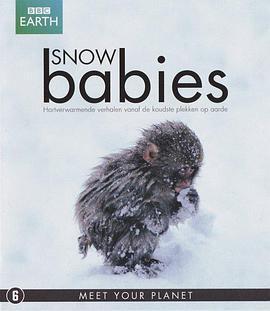 冰上动物宝宝/雪宝宝海报