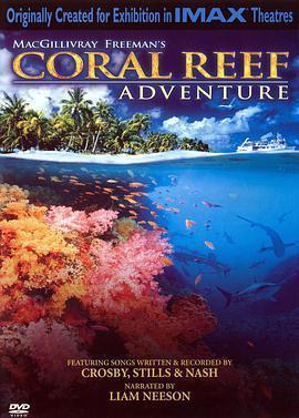 珊瑚礁海报