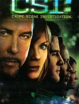 犯罪现场调查 第六季海报