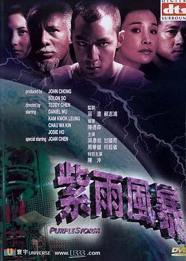 紫雨风暴海报