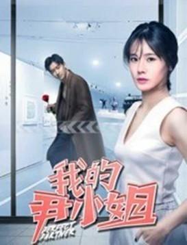 我的尹小姐海报