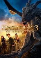 龙之心3:巫师的诅咒海报