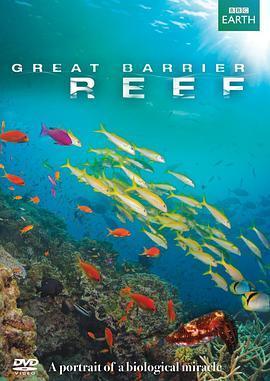 大堡礁2020