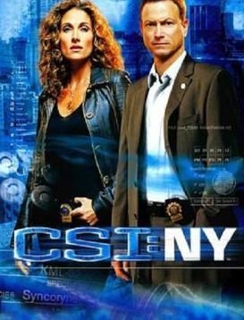 犯罪现场调查:纽约第四季海报