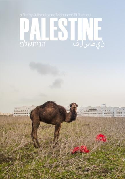 巴勒斯坦之子海报
