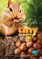 小巨人 3D Tiny Giants 3D海报