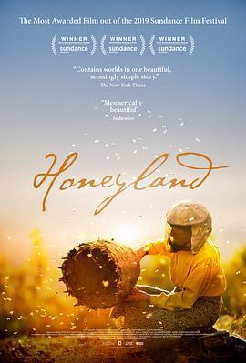 蜂蜜之地海报